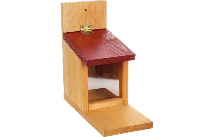 Flamingo Feeding table Scrat - Wood